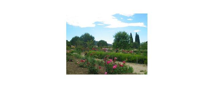 Les jardins du mus e international de la parfumerie art c te d 39 azur - Jardin du musee international de la parfumerie ...